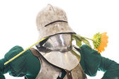 Medieval knight with sunflower — Stock Photo