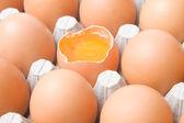 Kyckling ägg vagn — Stockfoto