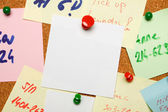 Blank note on cork board — Stock Photo