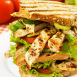 Grilled chicken sandwich — Stock Photo #3468317