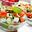Delicious cheese salad — Stock Photo #3469529
