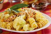 Tortiglioni pasta met bloemkool en kip — Stockfoto