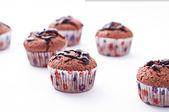 Dubbel choklad muffins — Stockfoto