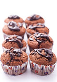Double chocolate muffins — Stock Photo