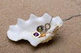 The exotic sea shell with beads lies on — Stockfoto