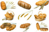 Wheat and bread on white background — Stock Photo