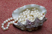 The exotic sea shell with a pearl beads lies on red sand — Stock Photo