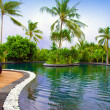 Maldives. Pool in tropical garden. — 图库照片 #3525411
