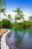 Maldives. Pool in tropical garden. — Stock Photo