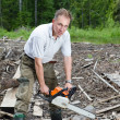 Stock Photo: The man in wood saws a tree a chain saw