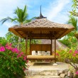 Pavilion for Spa procedures in tropical garden — Stock Photo #3762463
