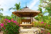 馆中的热带花园 spa 过程 — 图库照片
