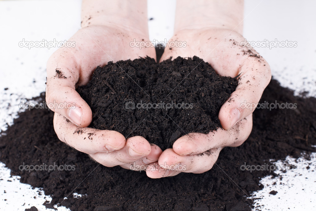 Soil in human hand. — Stock Photo #3558875