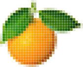 Orange — Stock Vector