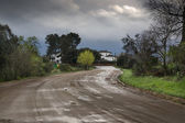 Winding country road after the rain — Stock Photo