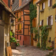 Stock Photo: Timbered houses in the village of Eguisheim in Alsace, France