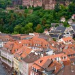Bridge in Heidelberg city and castle, Germany — Stock Photo