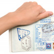 Passport in a hand — Stock Photo