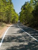Winding road2 — Stock Photo