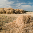 Haystack — Stock Photo #3754890