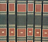 Fila di libri — Foto Stock