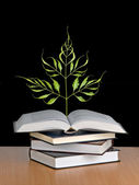 Tree growing from a book — Stock Photo