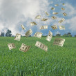 Money falling to agriculture — Stock Photo
