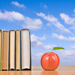 Red apple and books — Stock Photo #3453585