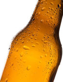Bottle of beer with water-drop — Stock Photo