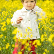 Beautiful girl in canola field — Stock Photo #2762604