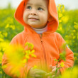 Beautiful child in canolfield — Stock Photo #2763717