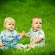 Stock Photo: Two boys on the grass