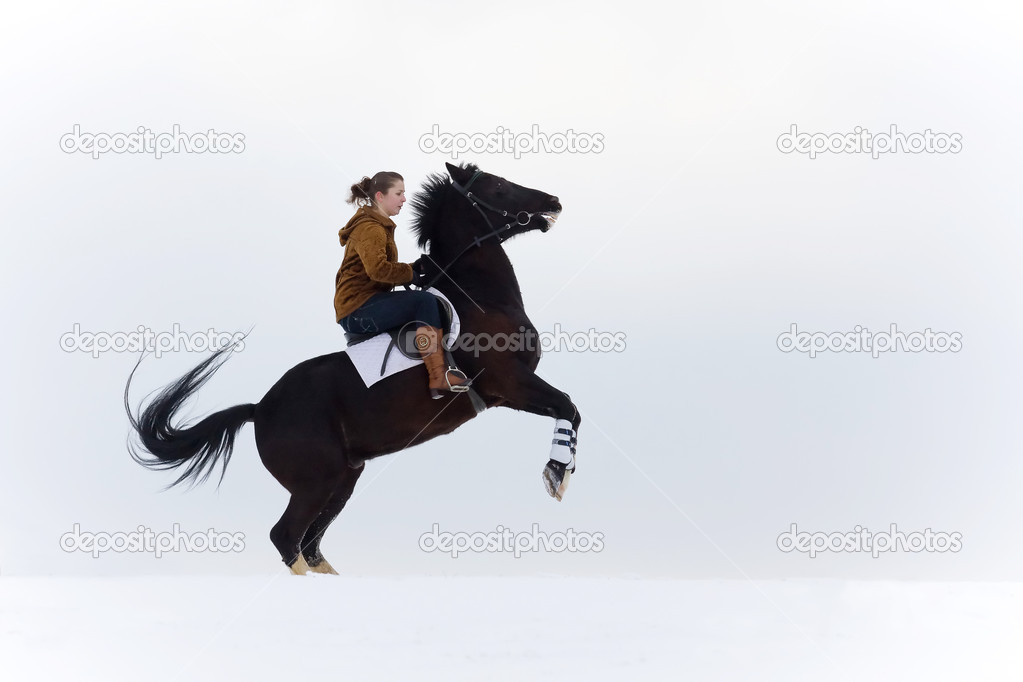 Girl riding a horse — Stock Photo #2784047