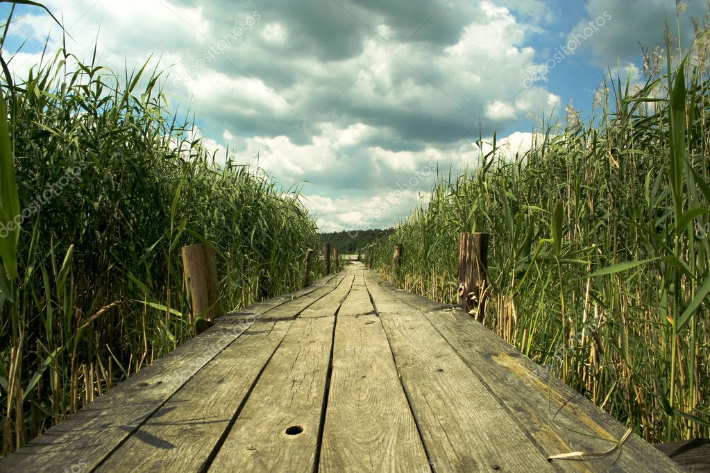 Wooden bridge  Stock Photo #2784061