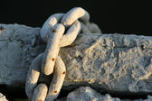Old muddy chain — 图库照片