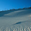 Wind patterns on a sand dune — Stock Photo