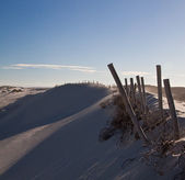 Wooden poles on a dune — Stock Photo