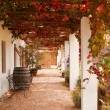 Stock Photo: Verandwith grape leaves