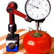 Precision tomato — Stock Photo