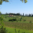The landscape of the Val d Orcia — Stockfoto