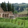Sant Antimo Abbey near Montalcino in Tuscany, Italy — Stockfoto #3480252