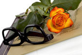 Rose on book — Stock Photo