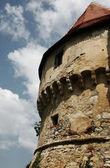 De toren van de hoek van oude kasteel — Stockfoto