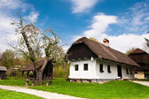 Village house in Croatian countryside — Stock Photo