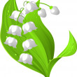Stock Vector: Lily of the valley