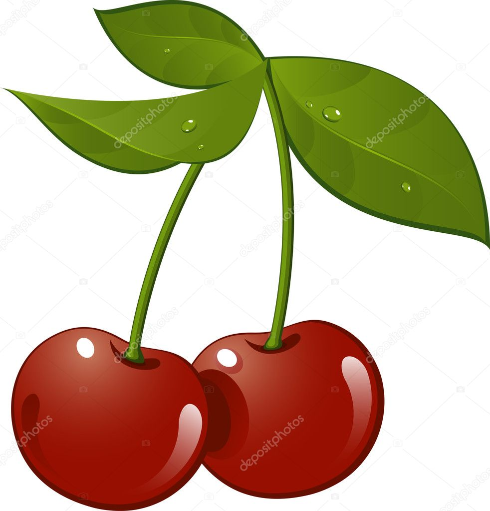 Cherry. Vector illustration, over white. EPS 8, AI. JPEG — Stock Vector #2891951