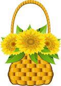 Basket sunflowers — Stock Vector