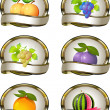Постер, плакат: Collection of labels for fruit products