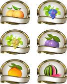 水果产品的标签的集合 — 图库矢量图片