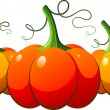Three orange pumpkins over white - Stock Vector